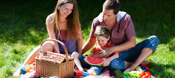 Top Picnic Ideas